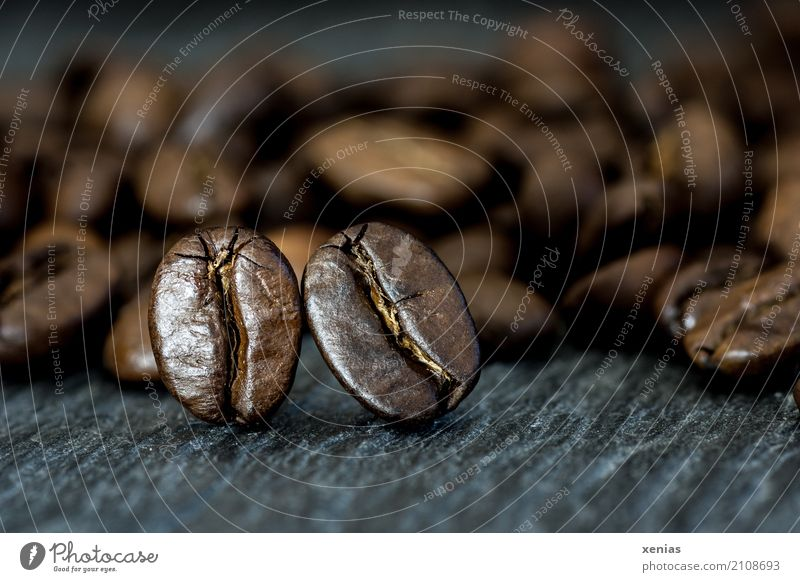 Two coffee beans Coffee bean To have a coffee Hot drink Kitchen Café Fragrance Brown Black Slate Caffeine fully automatic coffee maker Colour photo Studio shot