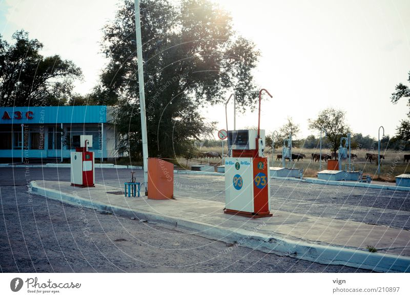 Nature Vacation & Travel Authentic In transit Petrol station Petrol pump Road movie Kazakhstan