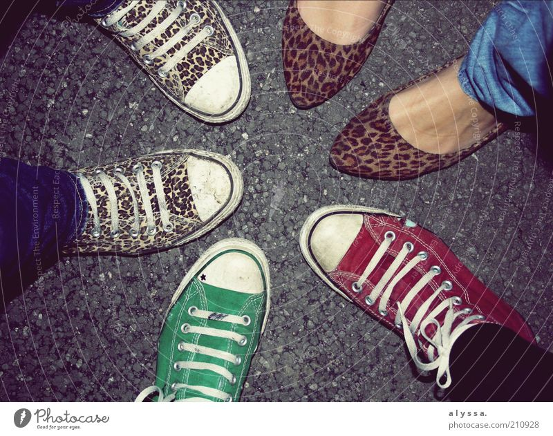 my shoes <3 Joy Human being Feminine Feet 18 - 30 years Youth (Young adults) Adults Rockabilly Fashion Footwear Chucks Multicoloured Gray Green Red