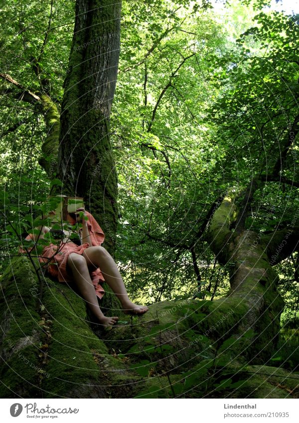 Green Paradise #2 Human being Feminine Woman Adults 1 Nature Summer Beautiful weather Tree Reading Towel Orange Book Legs Lie Branch Tree trunk Idyll Relaxation