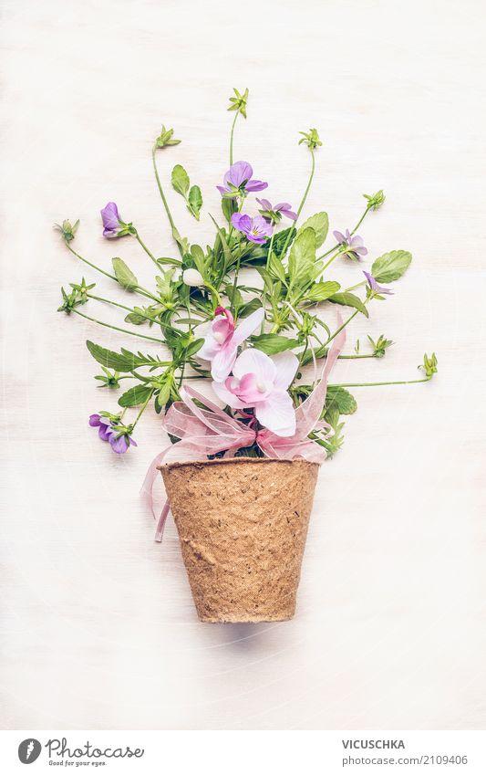 Nature Plant Summer White Flower Leaf Blossom Style Garden Pink Design Leisure and hobbies Decoration Gift Bouquet Flowerpot