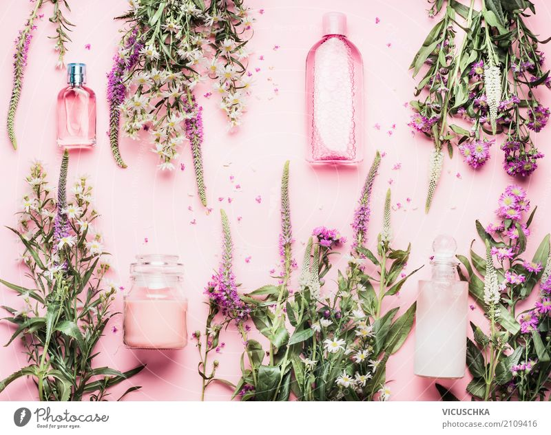 Nature Plant Beautiful Flower Leaf Life Lifestyle Blossom Healthy Style Pink Design Shopping Wellness Beauty Photography Personal hygiene