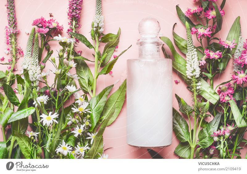 Nature Plant Beautiful Flower Leaf Life Healthy Blossom Style Pink Copy Space Design Shopping Wellness Personal hygiene Cosmetics
