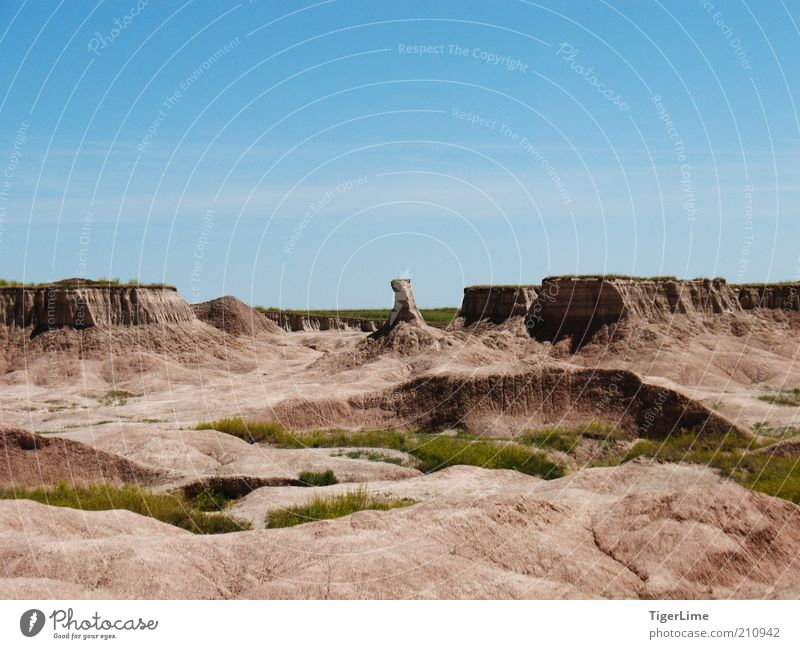 Badlands Bull Chase Environment Nature Landscape Earth Sand Air Cloudless sky Sunlight Summer Beautiful weather Warmth Drought Grass Rock Canyon Far-off places