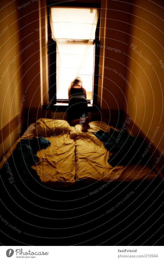 beautiful views Flat (apartment) Bed Room Human being 1 Window Relaxation Looking Sit Brown Gold Patient Calm Longing Indifferent Colour photo Subdued colour