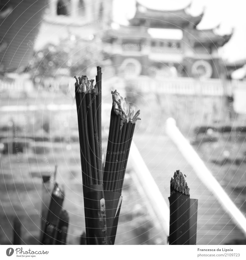 incense sticks Penang Malaya Asia Deserted Temple Pavilion Joss sticks Tourist Attraction Smoking Old Esthetic Far-off places Historic Near Town Gray Fragrance