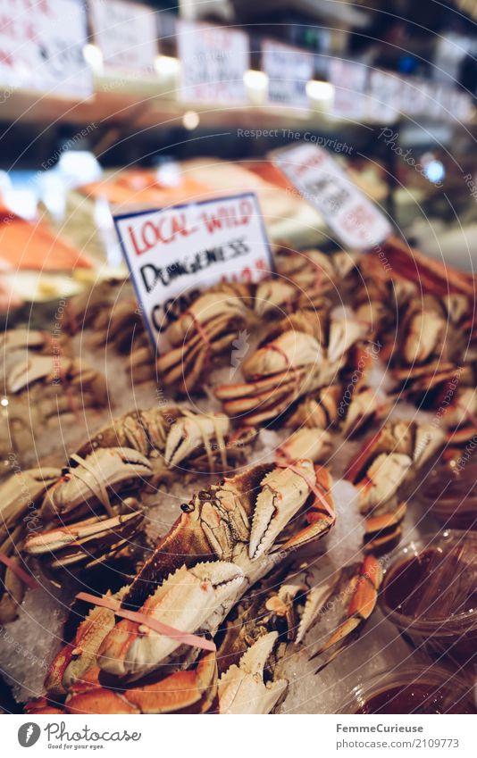 Roadtrip West Coast USA (244) Food Fish Seafood Nutrition To enjoy Shrimp Fish market Covered market Market day Price tag US Dollar English Colour photo