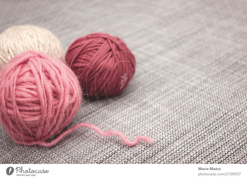 The knitting stuff is waiting Leisure and hobbies Handcrafts Knit Relaxation Authentic Friendliness Soft Gray Pink Patient Calm Contentment Creativity Wool