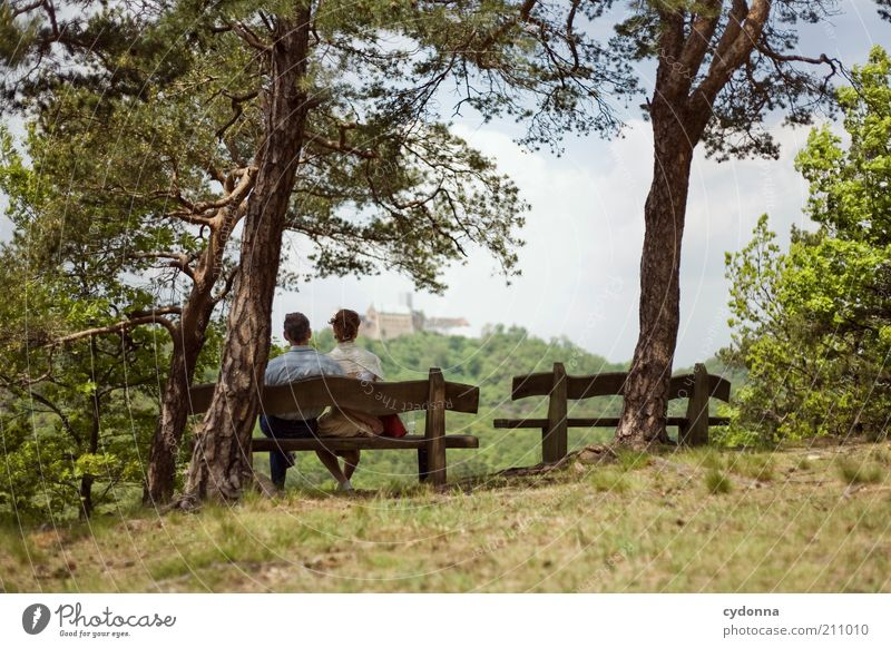 Human being Woman Nature Man Vacation & Travel Tree Calm Adults Relaxation Forest Landscape Far-off places Love Life Happy Couple