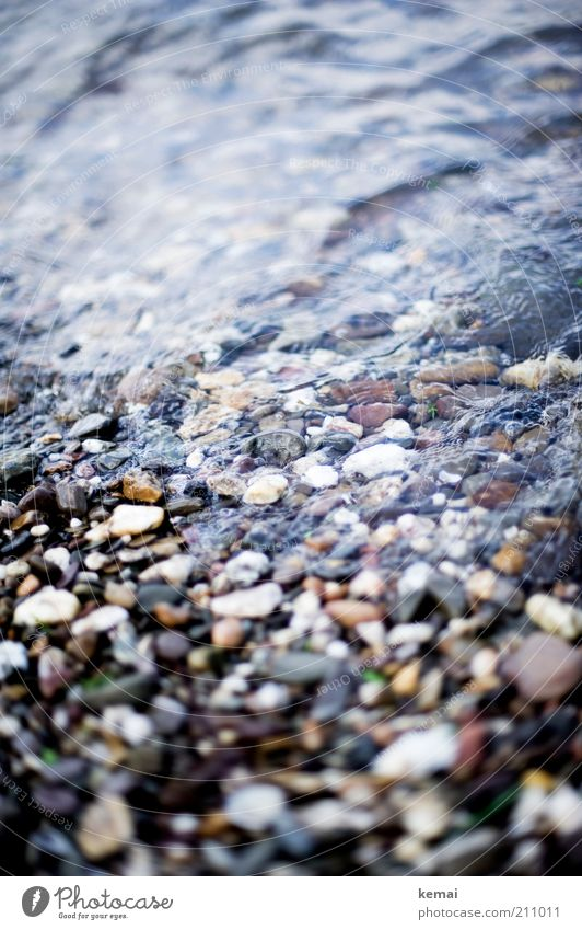 Nature Water Summer Stone Coast Environment Wet River Beautiful weather Brook River bank Rhine Pebble Stony