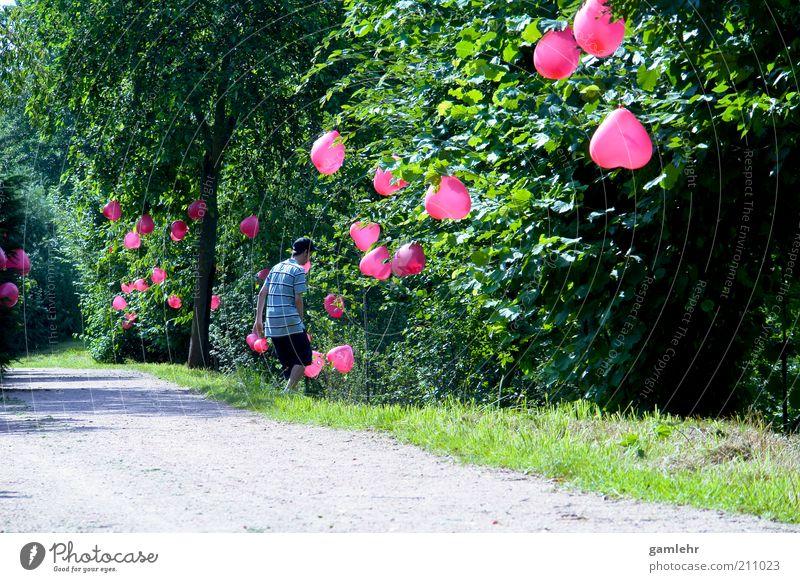 Nature Man Tree Plant Landscape Environment Love Emotions Lanes & trails Happy Feasts & Celebrations Park Pink Heart Happiness Decoration