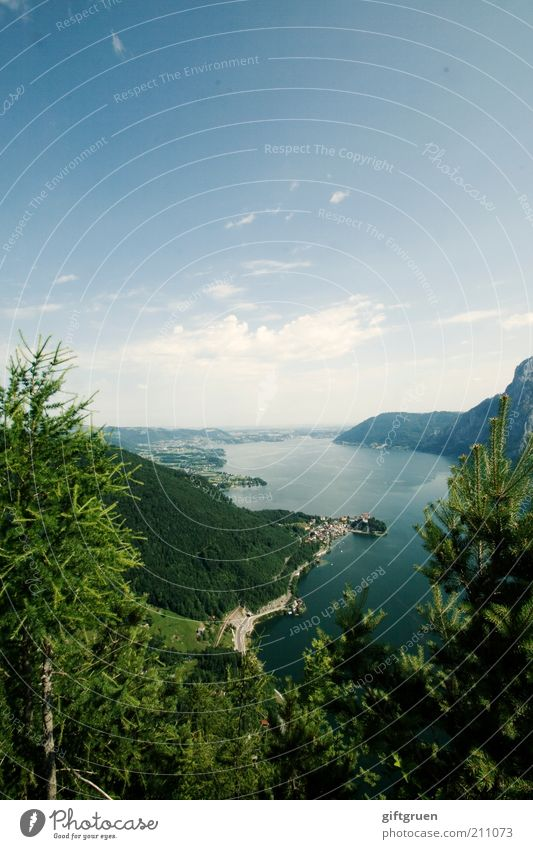 923 m a.s.l. Leisure and hobbies Vacation & Travel Tourism Trip Summer Mountain Tall Beautiful Traunsee Salzkammergut Federal State of Upper Austria