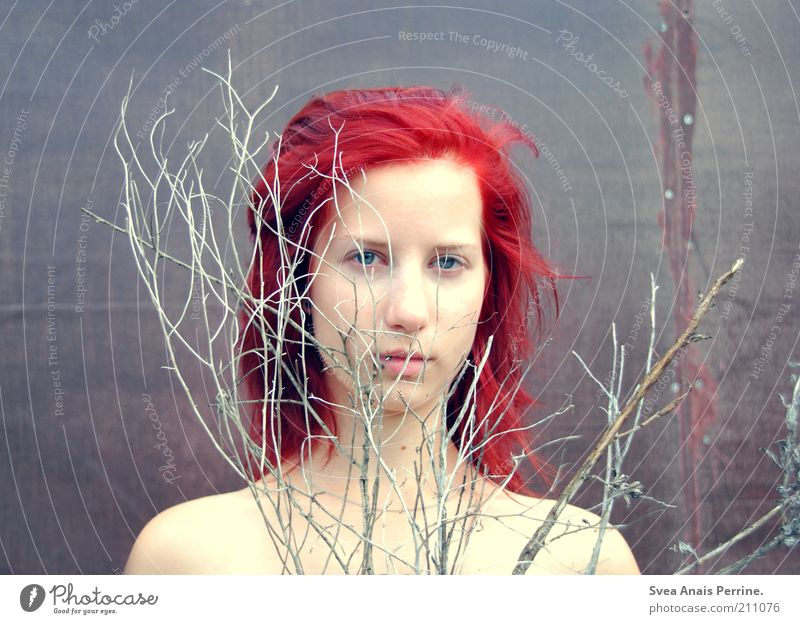 without smoke. Feminine Young woman Youth (Young adults) Skin 1 Human being 18 - 30 years Adults Plant Branch Hair and hairstyles Red-haired Think To dry up