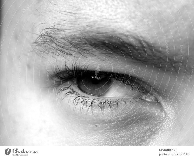 Man Eyes Moody Evil Whim