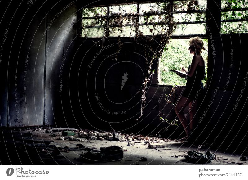 Within abandoned places Human being Feminine Young woman Youth (Young adults) Body 1 13 - 18 years Reading wild plants lianas Forest Virgin forest Deserted
