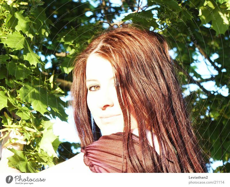 Summer weather II Light Pallid Woman Silhouette Red-haired Leaf green Human being Bright Profile sky blue Sky Looking Dominant