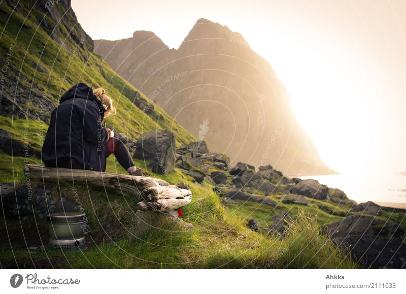 Young woman writing on the coast at sunset Harmonious Senses Relaxation Calm Meditation Adventure Youth (Young adults) Sun Rock Peak Coast Ocean Arctic Ocean