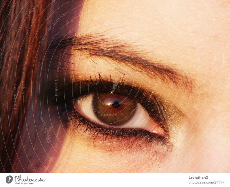 The look. Wearing makeup Make-up Brown Eyelash Woman Eyes Close-up Colour l sharp Hair and hairstyles Looking