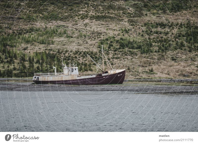 last wages Nature Landscape Grass Coast Beach Fjord Ocean Navigation Fishing boat Old Blue Gray Green Red Wreck Stranded Iceland Colour photo Subdued colour