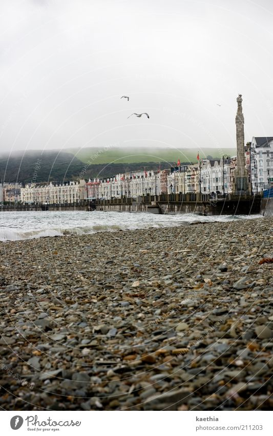 beach whisper Sightseeing City trip Architecture Flying Ocean Waves Seagull Bird England Isle of Man Tower Stone Fog Clouds Water Wave action Coast Town