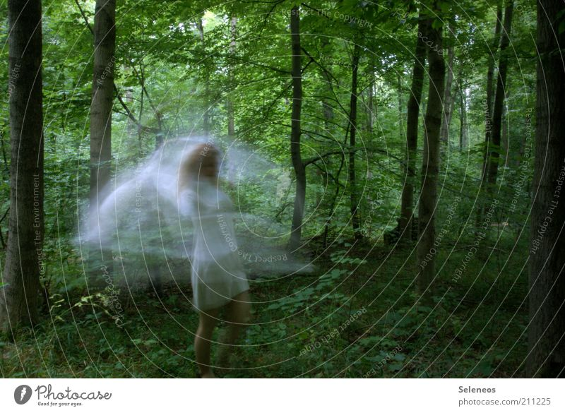 whirled wood fairy Trip Dance Human being Environment Nature Plant Tree Forest Dress Movement Creepy Feminine Esthetic Mysterious Idyll Pure Dream Fairy Elf