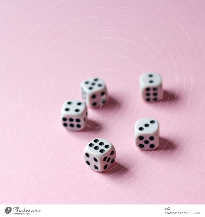 dice Leisure and hobbies Playing Game of chance Dice Digits and numbers Success Joy Happy Competition Fiasco 2 3 5 6 4 Colour photo Interior shot Studio shot