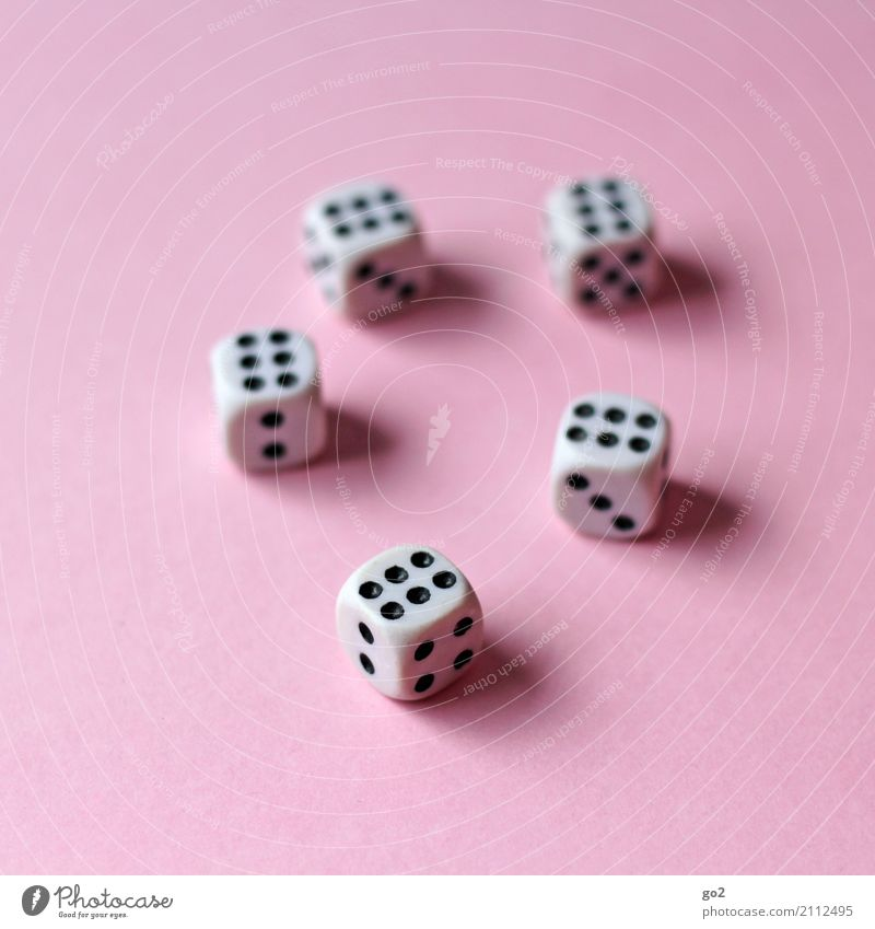 Full Score Leisure and hobbies Playing Game of chance Children's game Dice Crap game Digits and numbers Success Happy Throw dice 6 Colour photo Interior shot