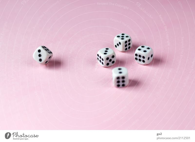 gambling Leisure and hobbies Playing Game of chance Dice Digits and numbers Happy Joy Colour photo Interior shot Studio shot Close-up Deserted Copy Space left
