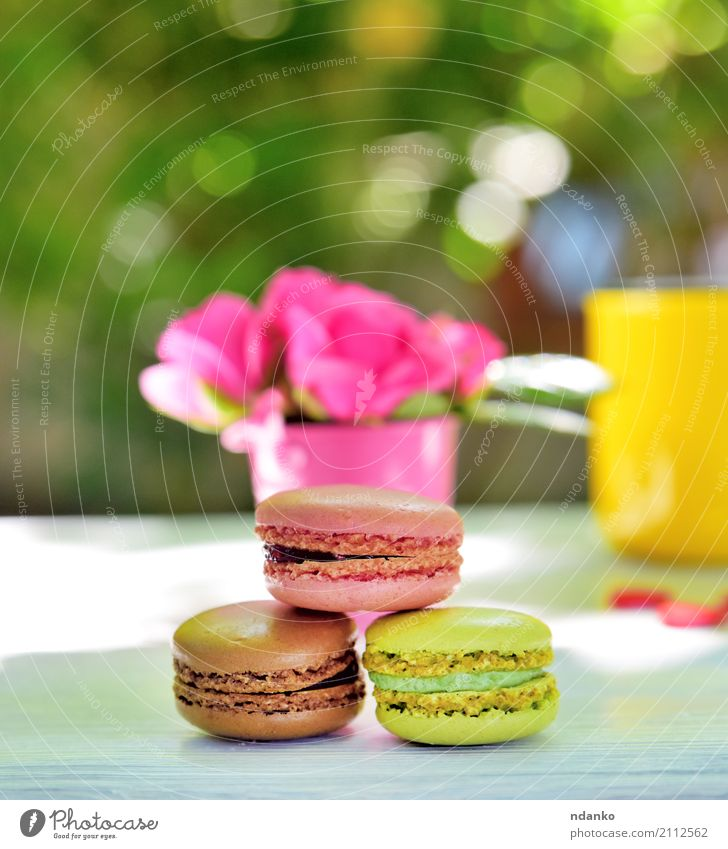 multicolored macaroons Dessert Candy Cup Table Flower Wood Eating Bright Brown Yellow Green Pink White Macaron biscuit rose food Tasty sunny vintage french