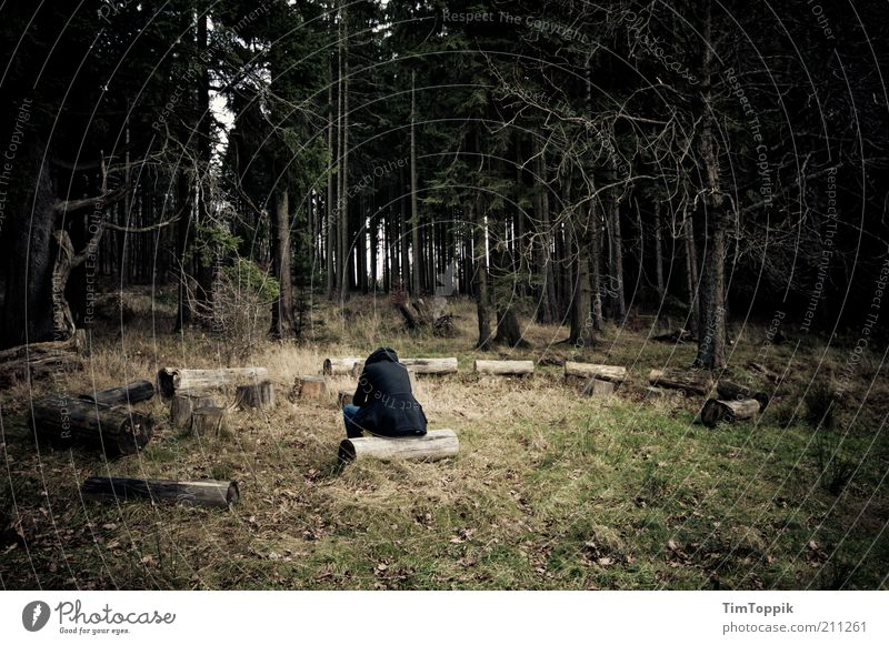 Green Loneliness Black Forest Dark Sadness Think Sit Meditative Grief Meeting Tree trunk Soul Doomed Woodground Twigs and branches
