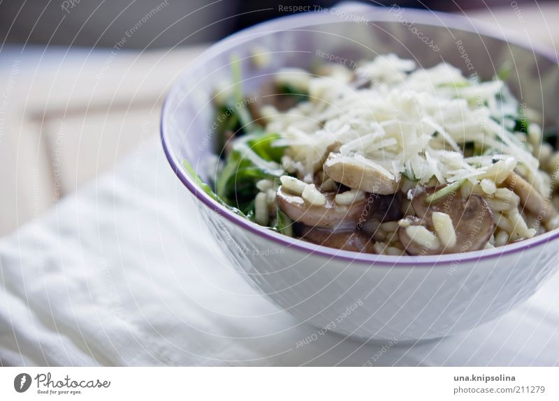 mushroom risotto Food Cheese Vegetable Grain Rucola Rice Mushroom Button mushroom Nutrition Lunch Dinner Organic produce Vegetarian diet Crockery Bowl Delicious