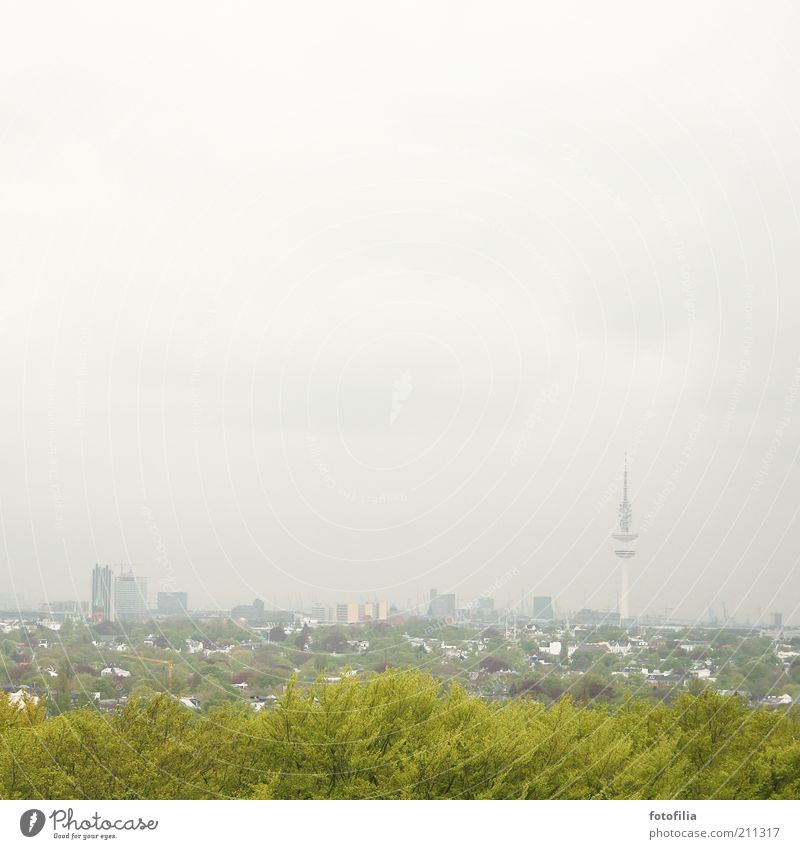 grey-green Hamburg Landscape Bad weather Fog Tree Town Capital city Skyline High-rise Park Tower Tourist Attraction Discover Large Tall Gray Green