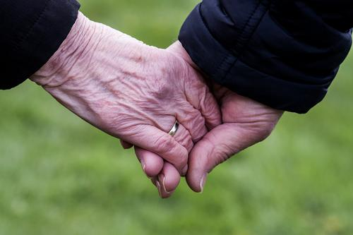 two seniors hold hands in front of a green background Female senior Woman Male senior Man Grandparents Senior citizen Partner Skin by hand 2 Human being