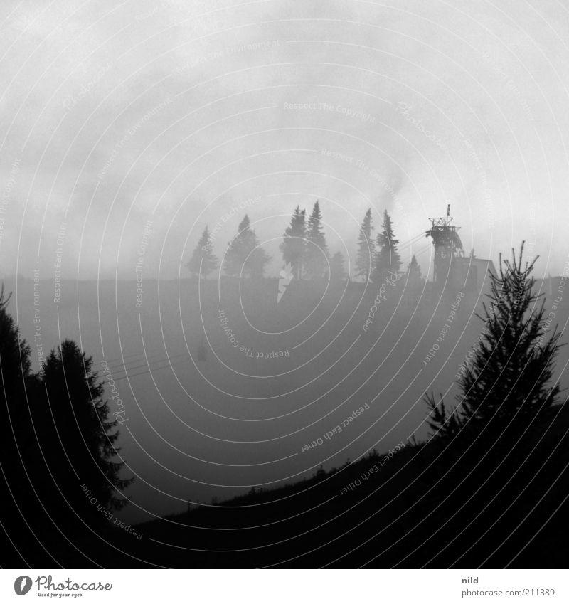 Nature Tree Clouds Dark Above Mountain Gray Landscape Fog Wind Weather Environment Threat Alps Haze Black & white photo