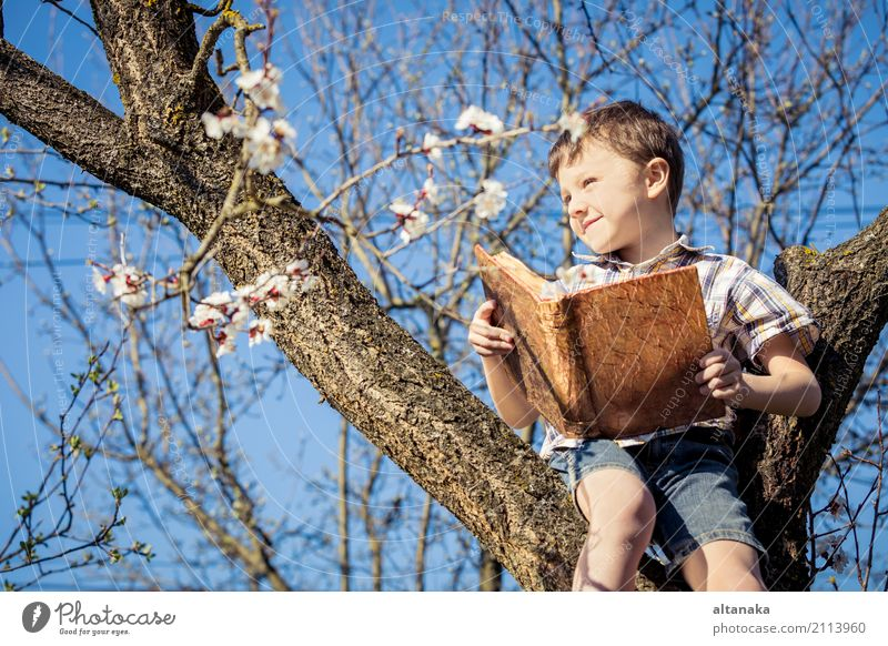 One little boy reading a book on a blossom tree. Concept children and science. Lifestyle Joy Happy Beautiful Leisure and hobbies Reading Summer Child School