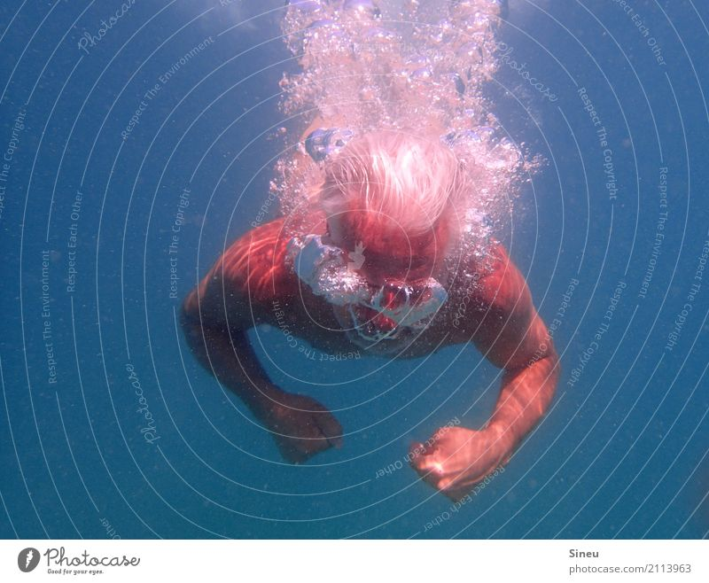 The man from the sea III Vacation & Travel Summer vacation Ocean Aquatics Dive Man Adults Head 1 Human being Elements Water Beautiful weather Gray-haired
