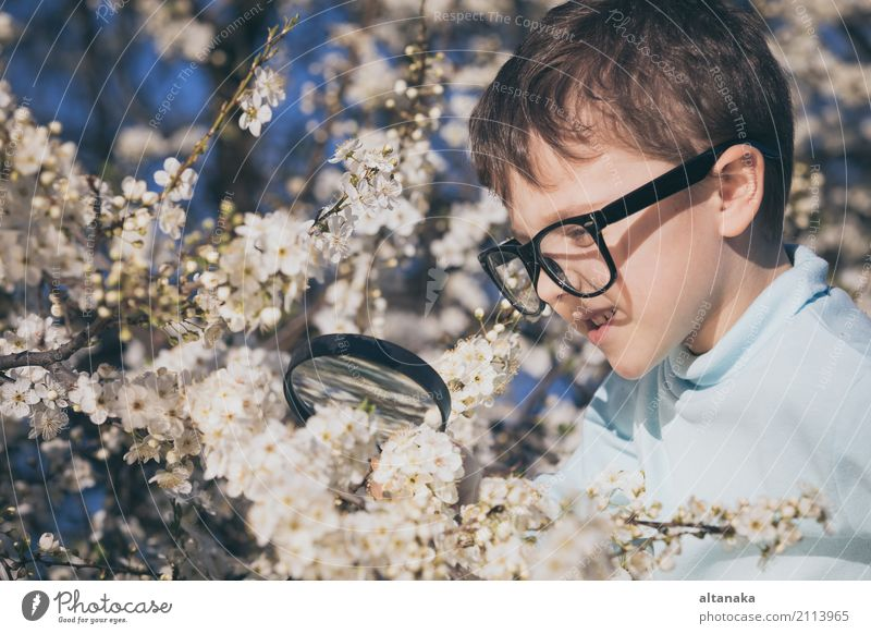 Happy little boy exploring nature with magnifying glas Human being Child Nature Summer Tree Flower Relaxation Joy Face Lifestyle Meadow Boy (child)