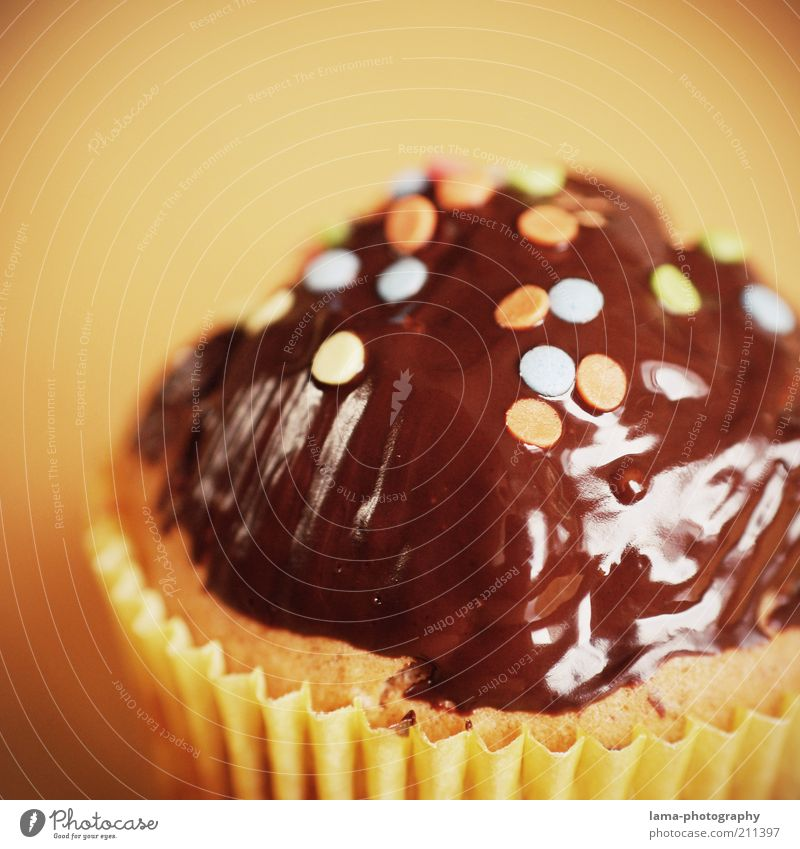 birthday treat Dough Baked goods Cake Chocolate Muffin Brown Confetti Decoration Colour photo Close-up Detail Macro (Extreme close-up) Shallow depth of field