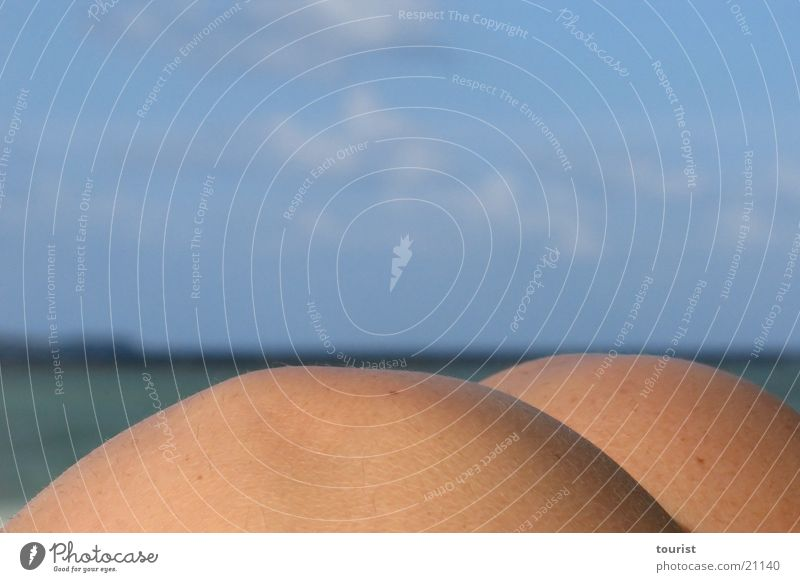 Woman Beach Ocean Eroticism Horizon Maldives Knee