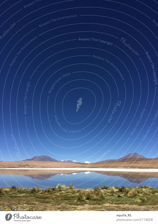 Langune in Bolivia Vacation & Travel Tourism Far-off places Expedition Hiking Nature Landscape Water Sky Cloudless sky Beautiful weather Mountain Peak