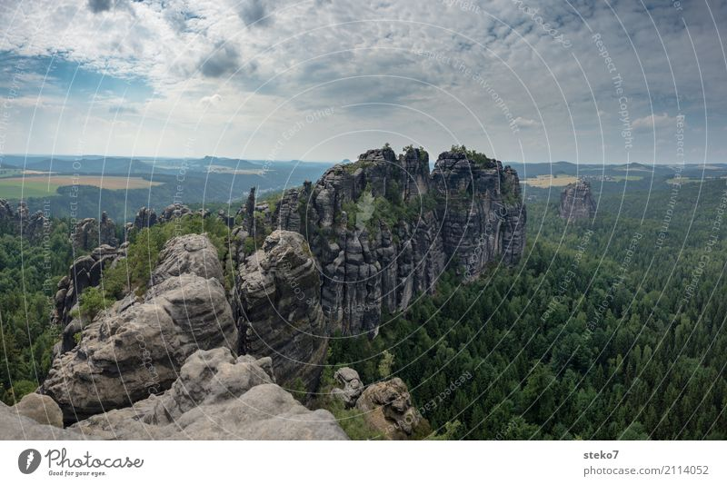 scratchstones Forest Rock Mountain Elbsandstone mountains Peak Tall Bizarre Uniqueness Horizon Rock formation Schrammstone Saxon Switzerland Climbing wall