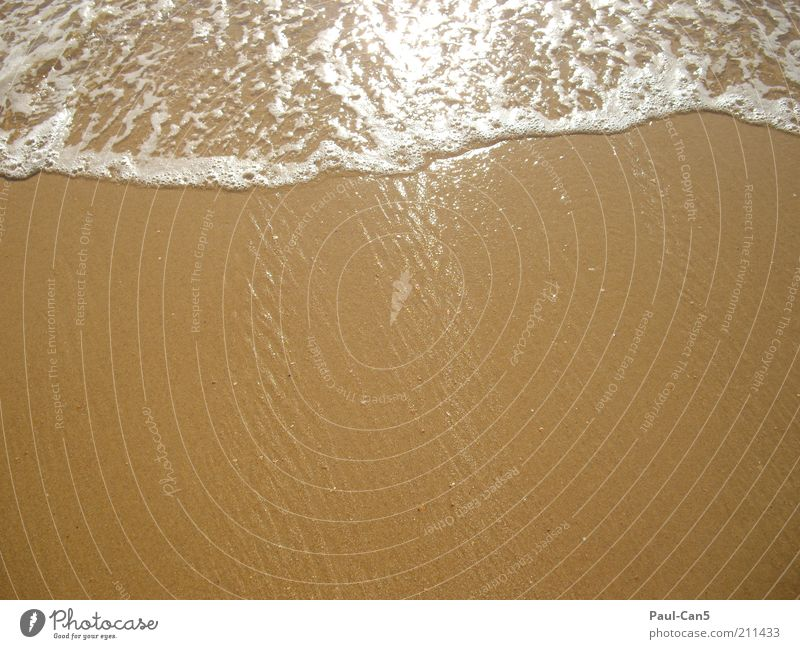 Nature Water Ocean Summer Beach Calm Loneliness Freedom Sand Warmth Coast Environment Wet Clean Longing Elements