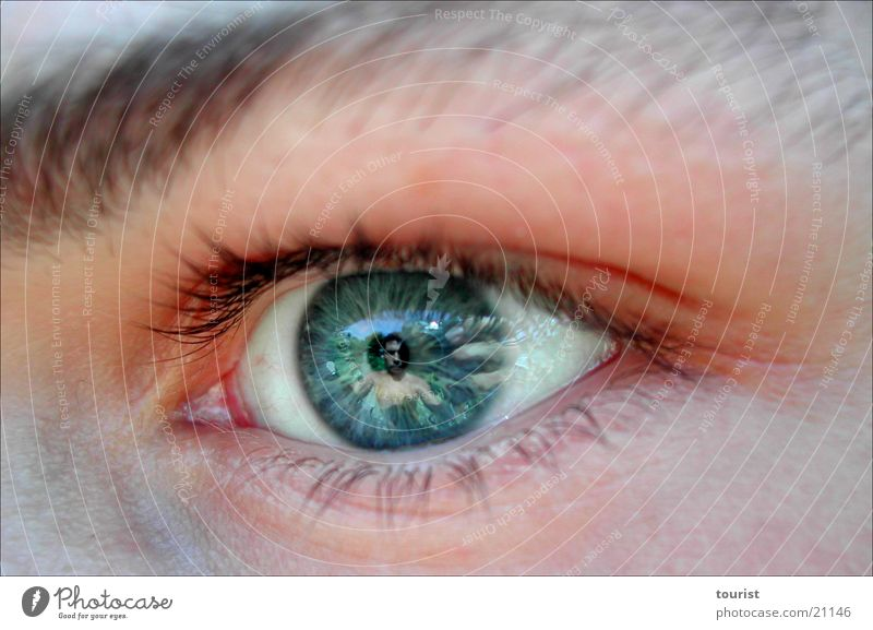 in your eyes Pupil Reflection Hand Human being Eyes Objective