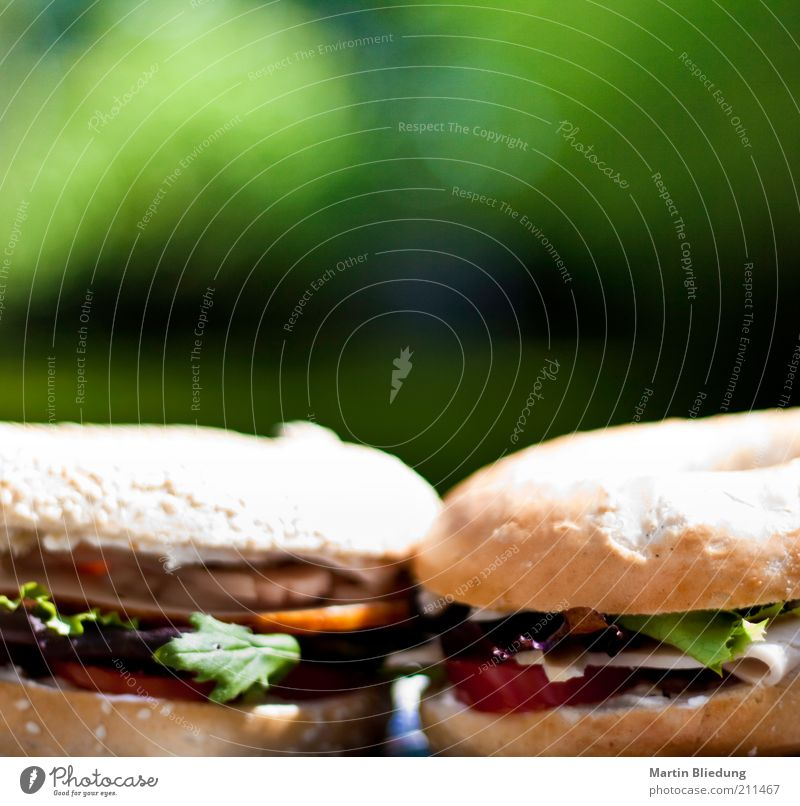 Green Red Yellow Life Pink Gold Food Vegetable Appetite Delicious Breakfast Fragrance Dinner Meat Roll Picnic
