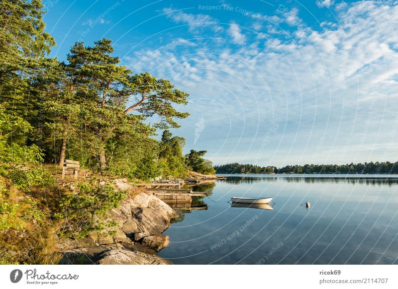 Nature Vacation & Travel Blue Green Tree Landscape Relaxation Clouds Forest Environment Coast Tourism Watercraft Idyll Island Baltic Sea