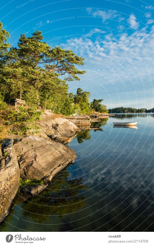 Archipelago off the Swedish coast of Stockholm Relaxation Vacation & Travel Tourism Island Nature Landscape Clouds Tree Forest Coast Baltic Sea Watercraft Blue