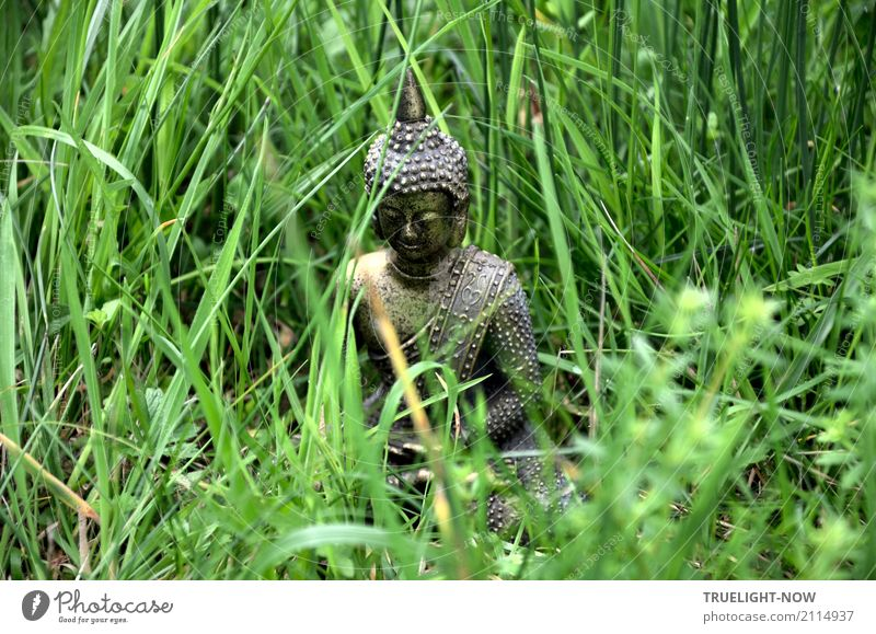 Small Buddha sitting half hidden in the green grass Happy Healthy Wellness Harmonious Well-being Contentment Relaxation Calm Meditation Sculpture Nature Spring