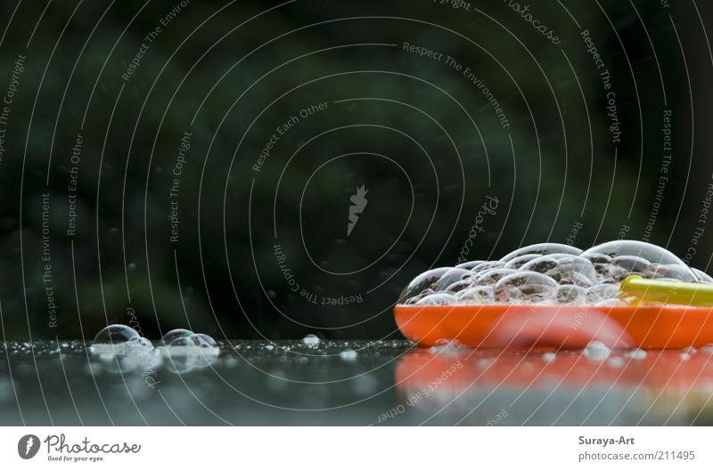 bubbles Bowl Plastic Wet Soap bubble Summer's day Multicoloured Exterior shot Experimental Day Soap dish