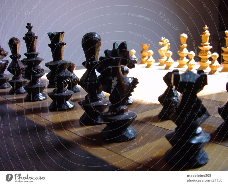 Chess 01 Planning Horse Black White Field Light Leisure and hobbies Tower Lady King Smart Wooden board Perspective Detail