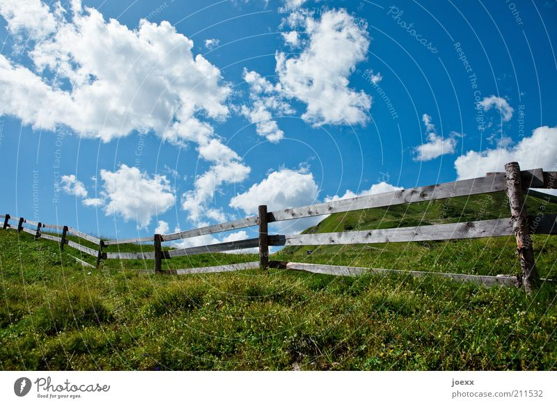 room divider Nature Landscape Plant Clouds Summer Beautiful weather Grass Meadow Hill Blossoming Fragrance Blue Green Calm Relaxation Idyll Fence Fence post